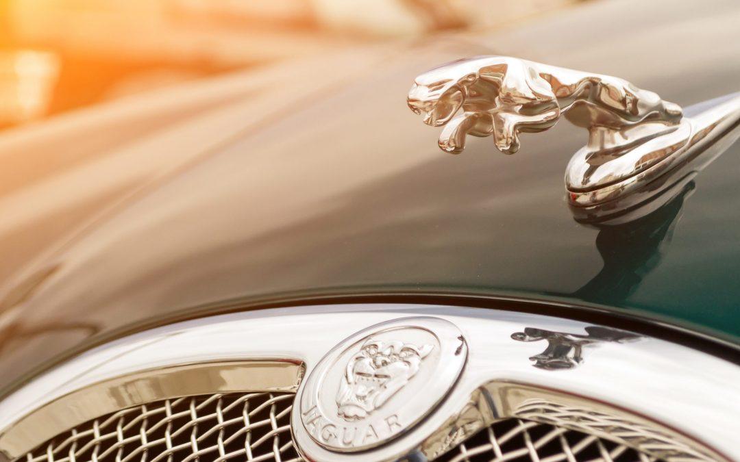Jaguar - website