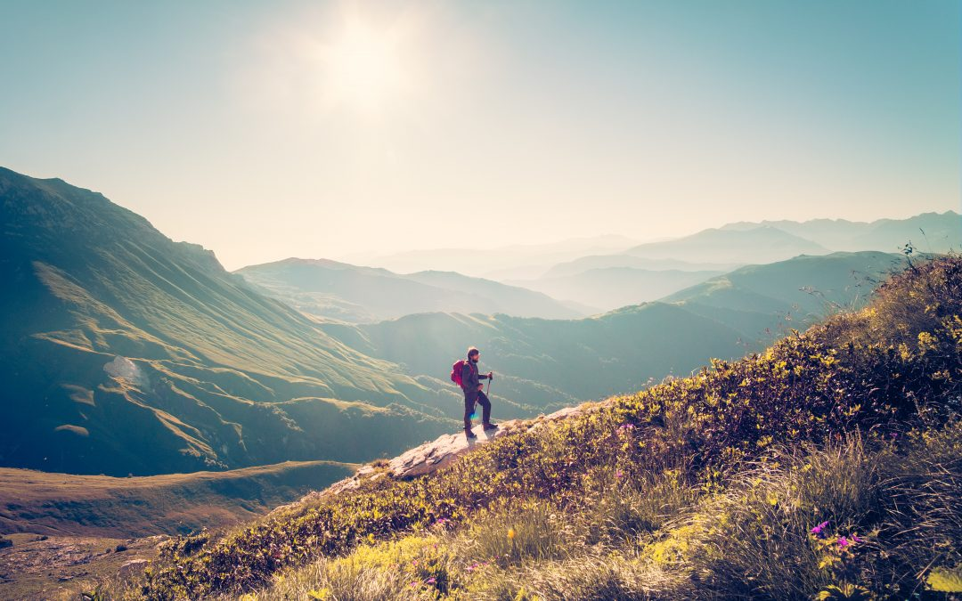 Wandeltocht in 12 stappen online marketing